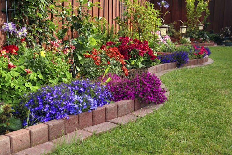 Colorful Flower Bed Designs