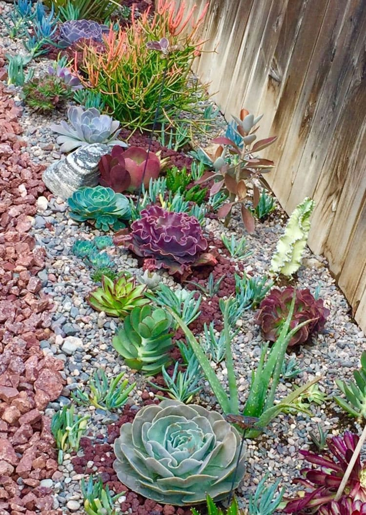 Colorful Rock Edging For Plant Bed