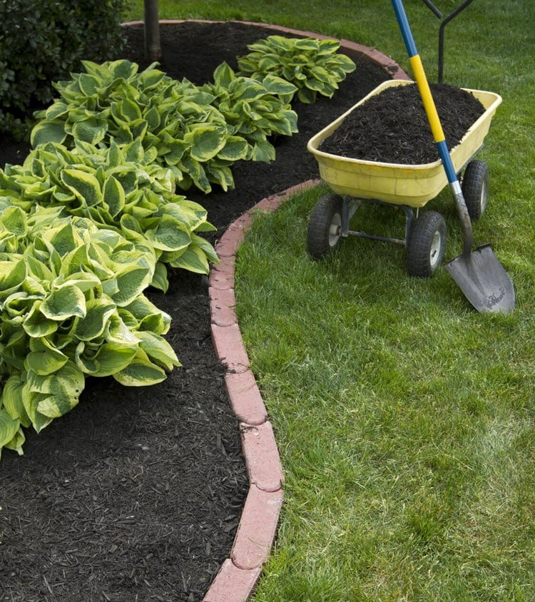 Cool Yard Edging Ideas