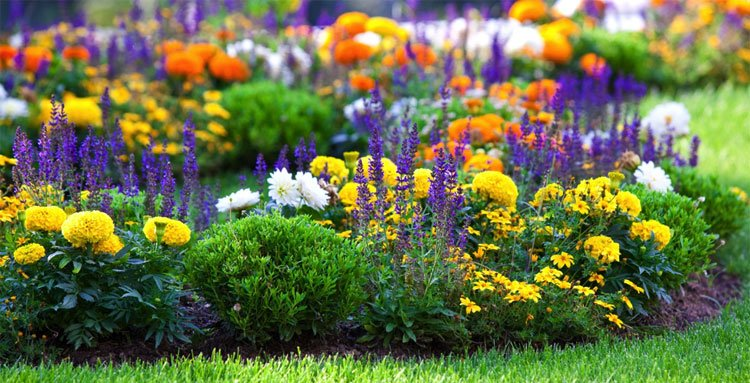 Pretty Flower Beds For Your Backyard
