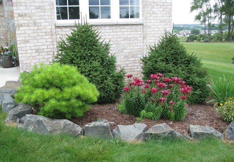 Landscape Border Ideas