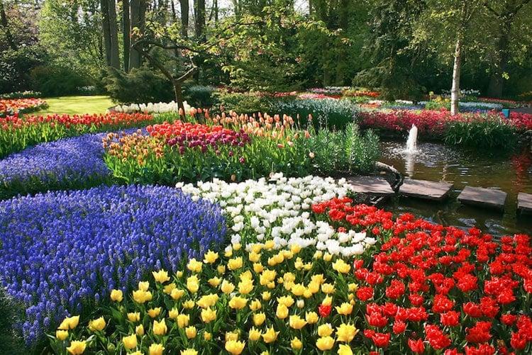Large Flower Beds