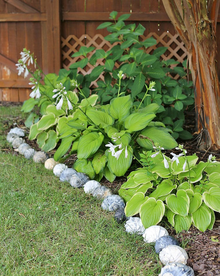 Line Your Garden with Stone Seashells for an Exotic Look
