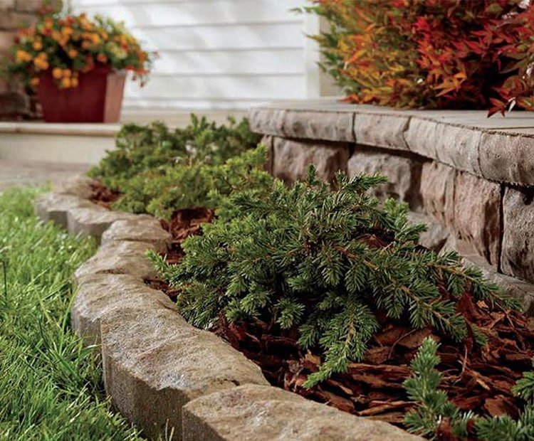 Match The Mulch to Your Lawn Edge for Consistent Landscape