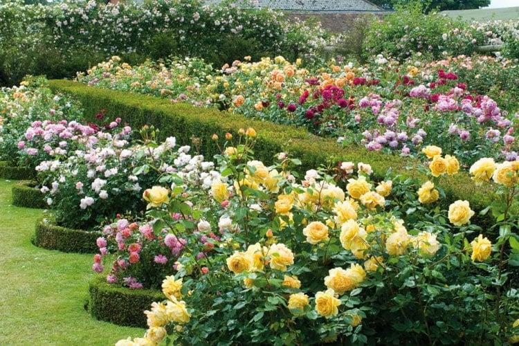 Pretty Flower Bed Decor Ideas
