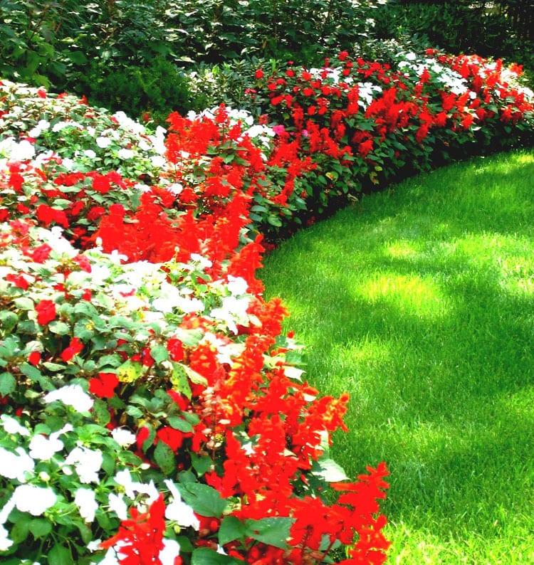 Red and White Flower Garden Decor Ideas