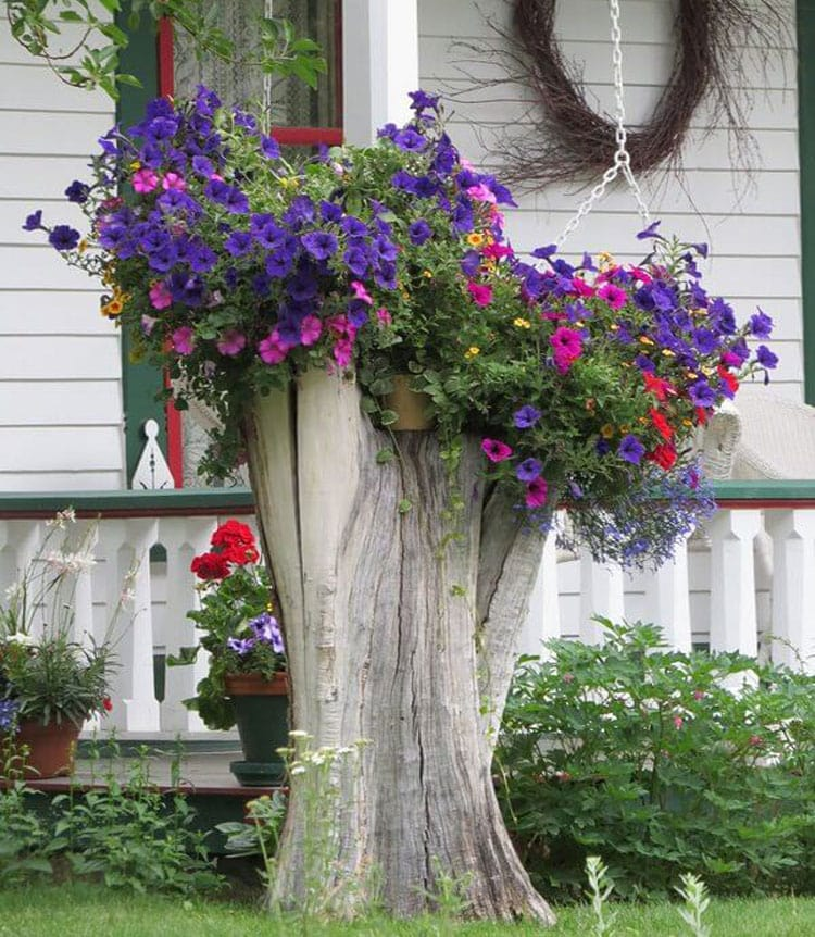 Elevate a Tree Stump by Adding a Pop of Color