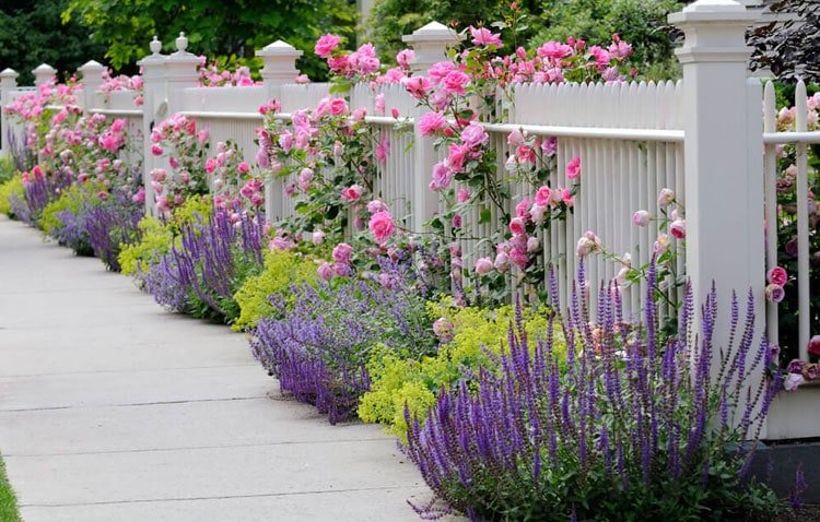 Nice Picket Fence with Colorful Flowers for a Trendy Front Yard Garden
