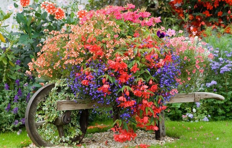 Stunning Flower Wheelbarrow to Liven Your Front Yard Garden