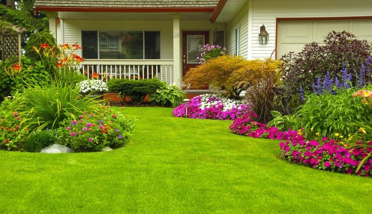 Tidy Lawn Highlights Your Flower Beds - Front Yard Garden Designs