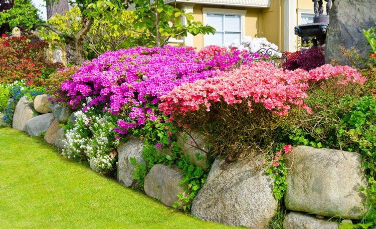 Use Rocks as Rustic Lawn Edges Paired with Colorful Garden Flowers