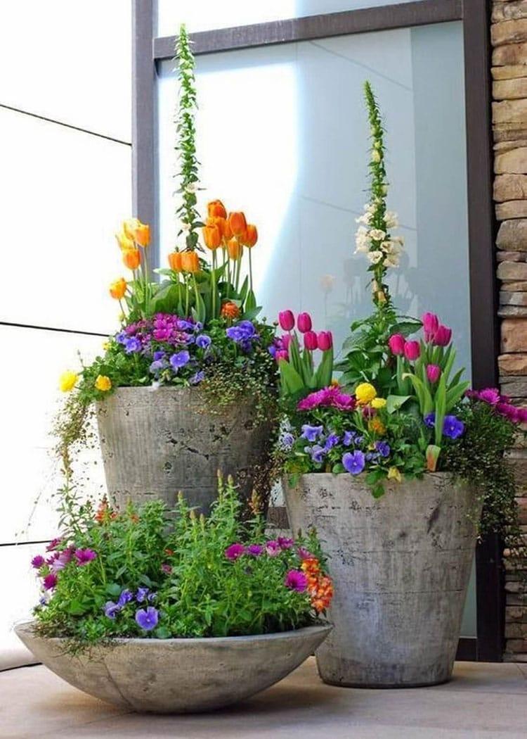 Beautiful Front Door Flowers with Concrete Planters