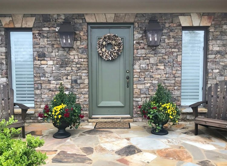 Classy Plants For Front Door Entrance
