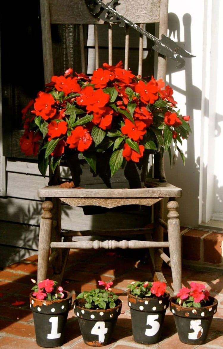 Creative Cute Front Door Flower Pot Ideas