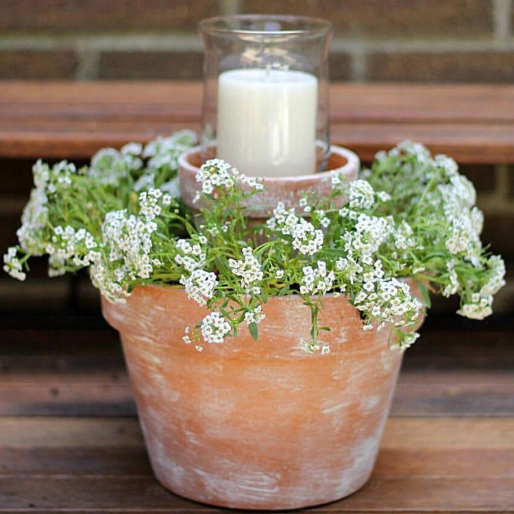 Cute Flower Pot Ideas For Front Door