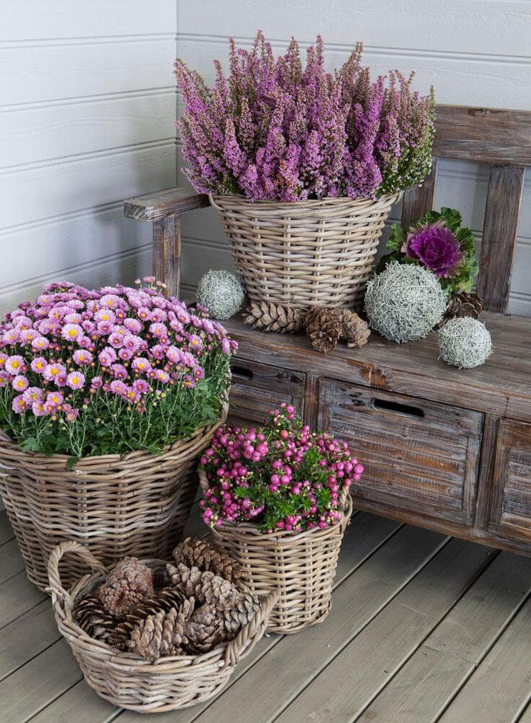 Flower Pot Ideas For Patio with Bench