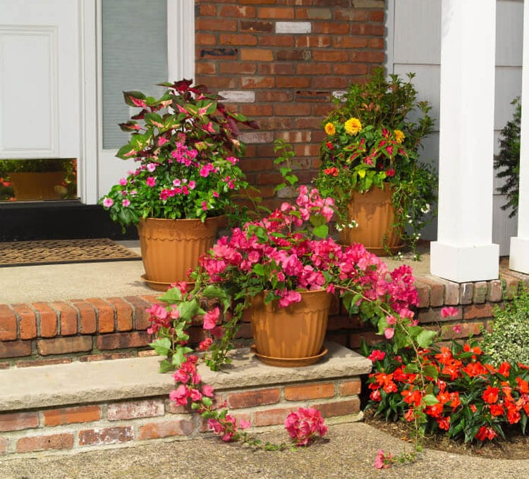 Low-Maintenance, Easy Flower Pots on Front Porch Stairs