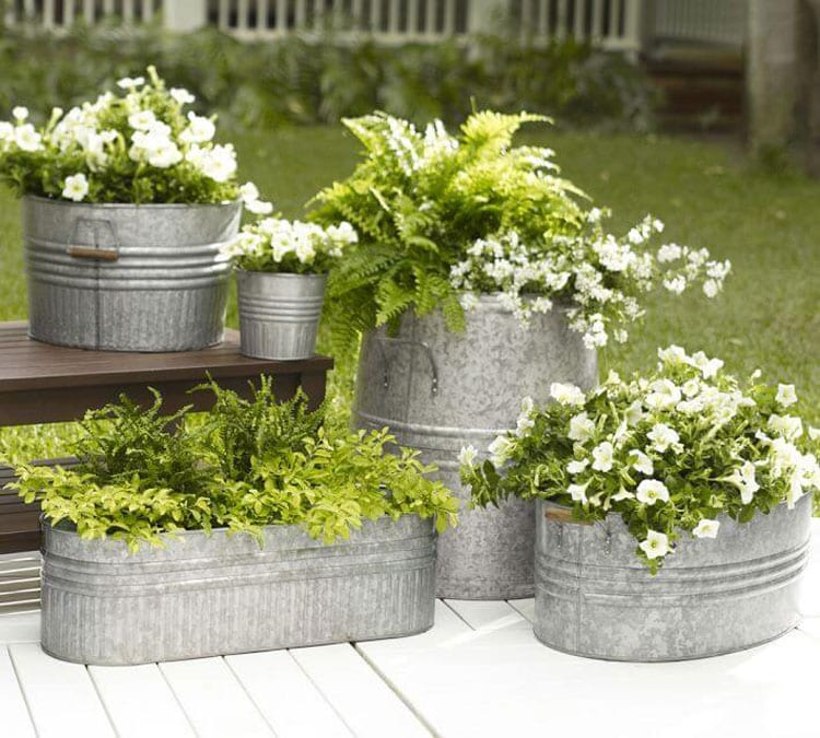 Metal Flower Pots on Patio