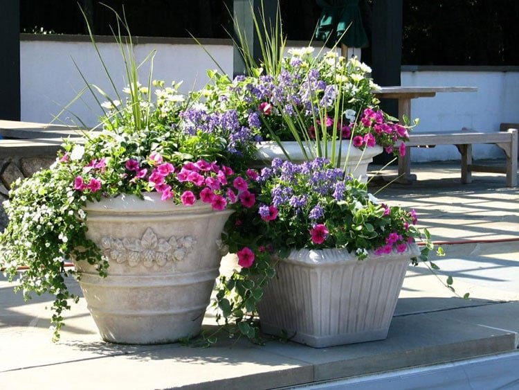 Porch Flower Pots