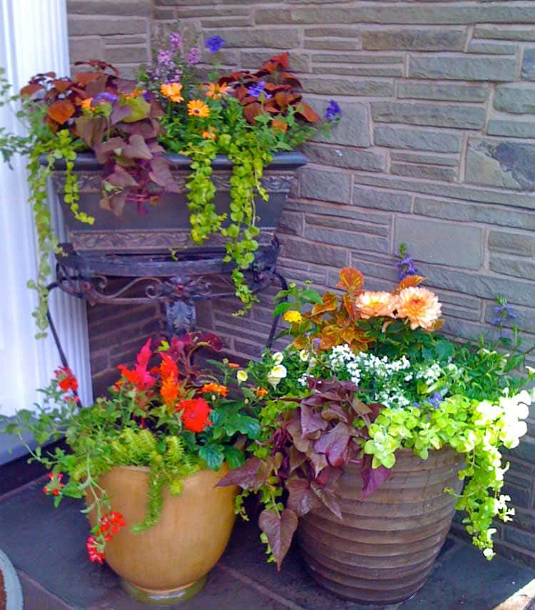 Pretty Front Porch Flower Pot Ideas and Planter Decor