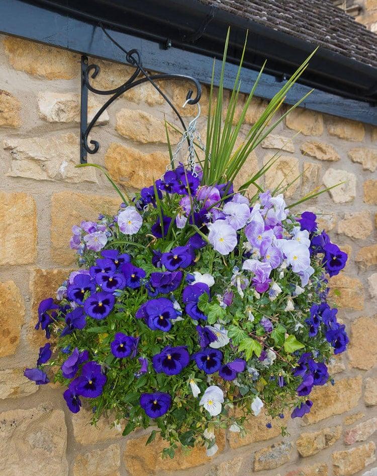 Pretty Hanging Flower Pots