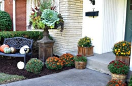The Best Front Door Flower Pot Ideas