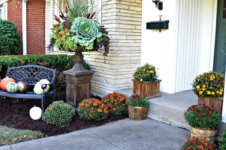 The Best Front Door Flower Pot Ideas