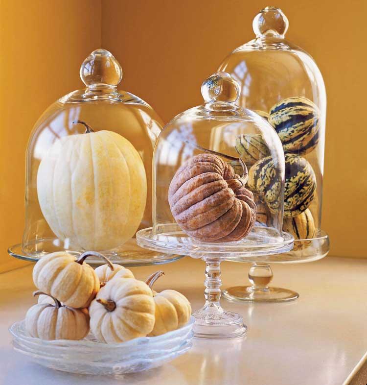 Gourds Under Cloches