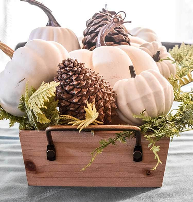Pumpkins and Pinecones