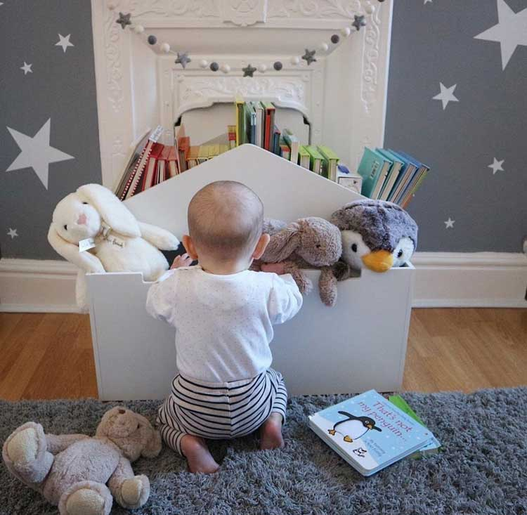 Traditional Toddler Storage Box For Books and Stuffed Animals
