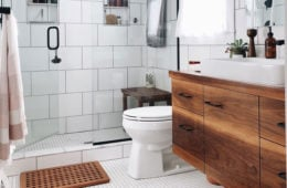 Toilet Brands
