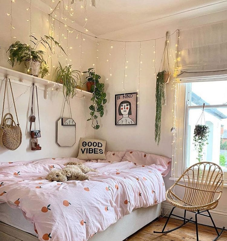 Decorate Your Dorm Room with Plants